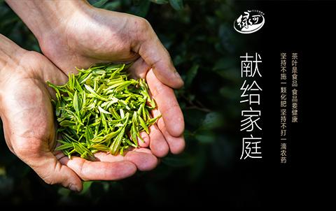 湖北绿可生态茶业有限公司