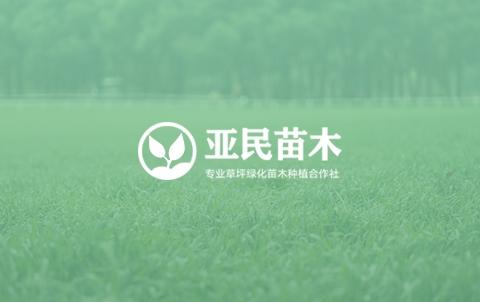 枝江亚民苗木种植专业合作社